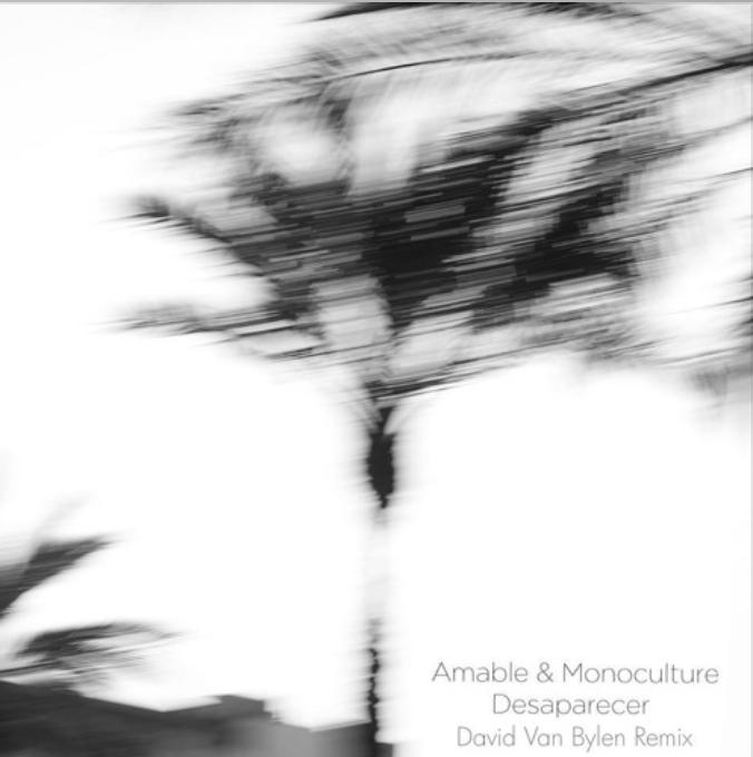 Amable & Monoculture – Desaparecer (David Van Bylen Remix)
