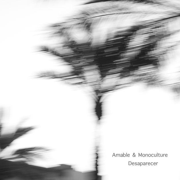 """Amable & Monoculture """"Desaparecer (David Kano Remix)"""""""
