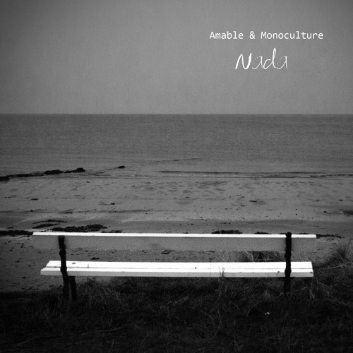 "Amable & Monoculture ""Nada (edit version)"""