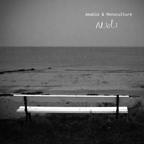 "Amable & Monoculture ""Nada (edit version)"""