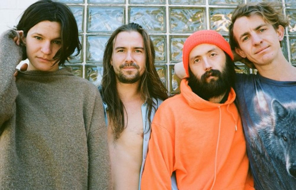 TOP NOVIEMBRE 2019 Big Thief, Corridor, Otha, Metronomy, Idles, Feet….